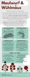 Unterschied zwischen Maulwurf und Wühlmaus erkennen